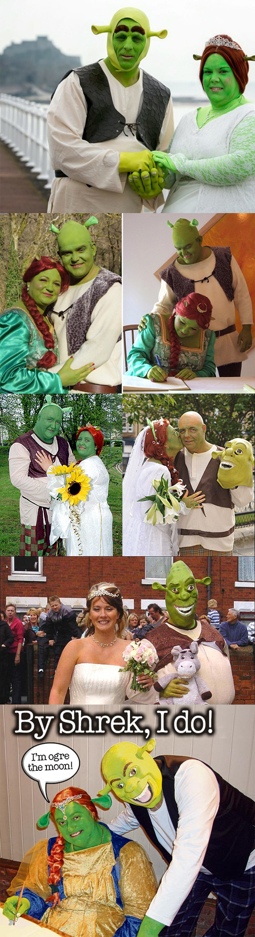 Shrek Wedding
